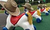 Wind-Up horses competitive challenge